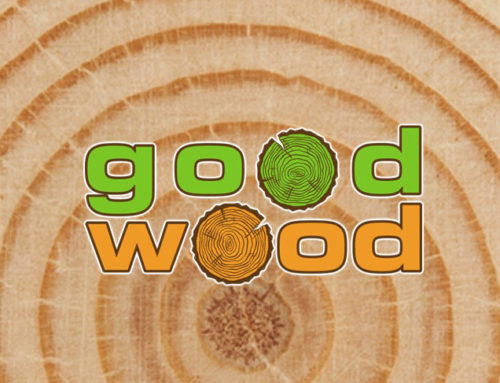 2º Seminário Transnacional  GOOD WOOD